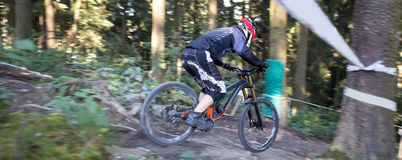 Mountainbiker en declive fotos de archivo