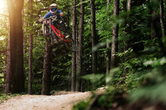 Mountainbiker-Fahrrad Forest Downhill Lizenzfreies Stockfoto