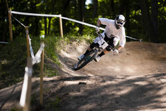 Mountainbiker Forest Bike Downhill Arkivbilder