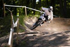 Mountainbiker Lasowy rower Zjazdowy Obrazy Stock