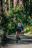 Mountainbiker rides in forest Royalty Free Stock Image