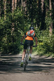 Mountainbiker rides in forest Royalty Free Stock Images