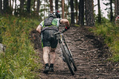 Mountainbiker rides in forest Royalty Free Stock Photography