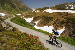 Mountainbiker riding in the Alps Royalty Free Stock Photography