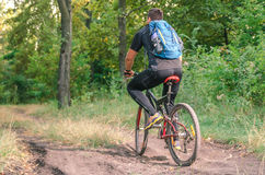 Mountainbiker riding on bicycle in summer park at sunny day. Mountainbiker riding on bicycle in summer park at sunny day Stock Photography