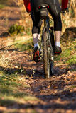 Mountainbiker on a singletrail. In the forest Royalty Free Stock Images