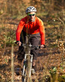 Mountainbiker on a singletrail. A mountainbiker cycling on a singletrail Royalty Free Stock Photo