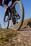 Mountainbiker on a singletrail. A mountainbiker cycling on a singletrail Royalty Free Stock Photography