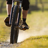 Mountainbiker on a singletrail. Mountainbiker cycling on a singletrail Royalty Free Stock Photos