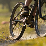 Mountainbiker on a singletrail stock photos