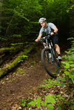 Mountainbiker som kör till och med en kurva Royaltyfria Bilder