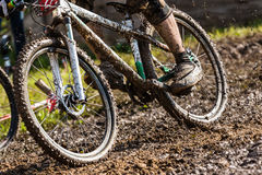 Mountainbiker som kör till och med mud royaltyfri foto