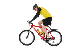 Mountainbiker in studio Royalty Free Stock Image