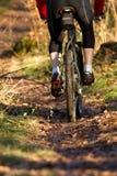 Mountainbiker sur un singletrail Images libres de droits