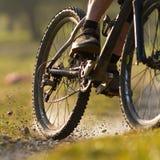 Mountainbiker sur un singletrail Photos stock