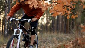 Mountainbikerfahrten stock video footage