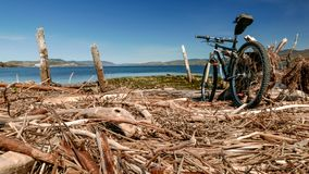 Mountainbikeritt till en av mina favorit- fläckar längs den Gaspe kusten arkivfoto