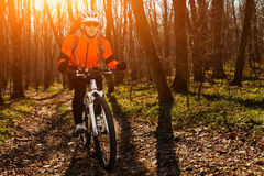 Mountainbikerreiten auf Fahrrad in der springforest Landschaft Lizenzfreies Stockbild