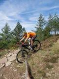 Mountainbikerreitspuren in Wales lizenzfreie stockbilder