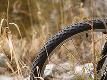 Mountainbiket rullar fotografering för bildbyråer
