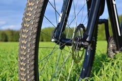 Mountainbiket rullar med disketten bromsar Fotografering för Bildbyråer
