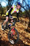 Mountainbiking #5 Royalty Free Stock Photo