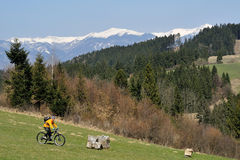 Mountainbiking Imagem de Stock Royalty Free