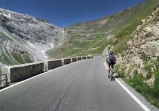Mountainbiking al dello Stelvio di Passo Fotografia Stock Libera da Diritti