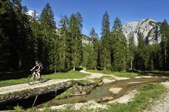 Mountainbiking em Oderntal Fotografia de Stock Royalty Free