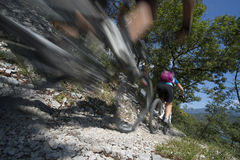Mountainbiking - mountainbike Arkivbild