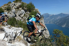 Mountainbiking - mountainbike Royaltyfri Foto
