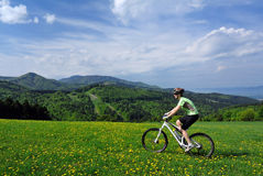 Mountainbiking Stock Images