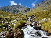 Mountaincreek Royalty Free Stock Photo