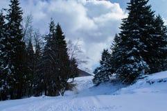 Mountaine Bucegi, Румыния Стоковое Изображение
