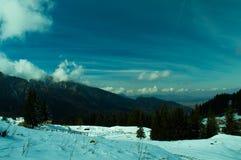 Mountaine Bucegi, Румыния Стоковое Фото