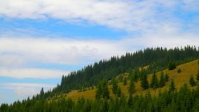 Mountaine with forest. Nature timelapse Landscape with Beautiful blue sky with clouds. Mountaine Nature timelapse Landscape with Beautiful blue sky with clouds stock video