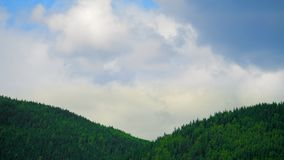 Mountaine with forest. Nature timelapse Landscape with Beautiful blue sky with clouds. Mountaine Nature timelapse Landscape with Beautiful blue sky with clouds stock video footage