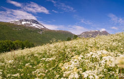 mountaine view, Tromso, Norway. Stock Photo
