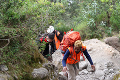 mountaineer immagini stock libere da diritti