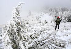 Mountaineer on a trail. Trekking time in Ciucas mountains,Romania Royalty Free Stock Photography