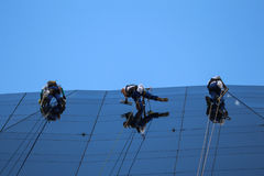 Mountaineers cleaning glass facade of building Royalty Free Stock Photo