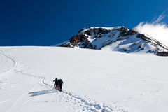 Mountaineers walking on Monte Rosa Glacier Royalty Free Stock Photo