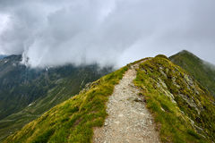 Mountaineous summer landscape Stock Images