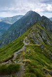 Mountaineous summer landscape Royalty Free Stock Images