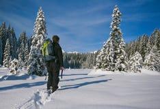 Mountainering Fotografia Stock