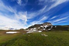 Mountaing landskap Arkivfoto
