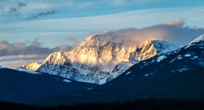 Mountain in morning light Jasper royalty free stock photo