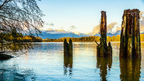 Mountainn view over the Fraser River in British Columbia, Canada Royalty Free Stock Photos