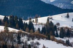Mountainous area  on winter morning Royalty Free Stock Image