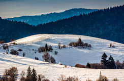 Mountainous area on winter morning. Mountainous rural area of Carpathians in winter on fresh frosty morning Royalty Free Stock Photos